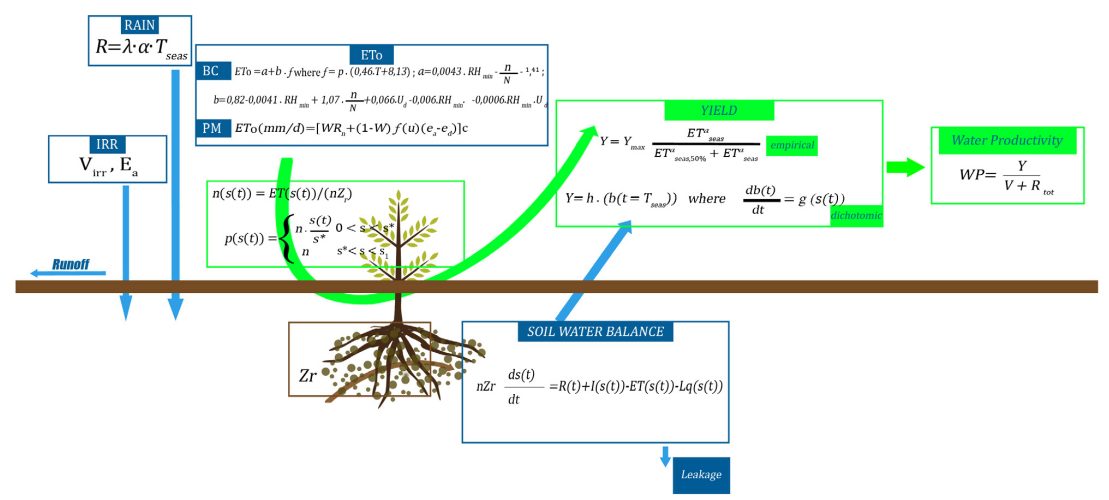 MY SIRR: Minimalist agro-hydrological model for Sustainable IRRigation management—Soil moisture and crop dynamics