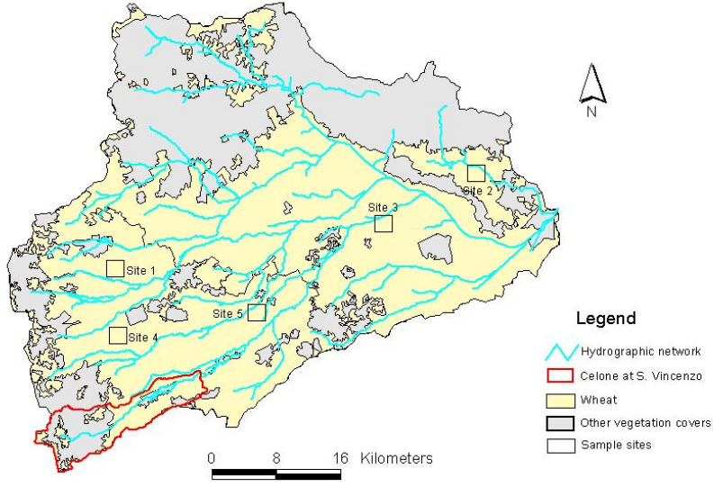 Influences of Leaf Area Index estimations on the soil water balance predictions in Mediterranean regions