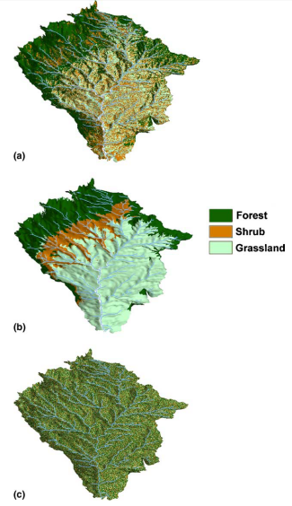On the coupled geomorphological and ecohydrological organization of river basins