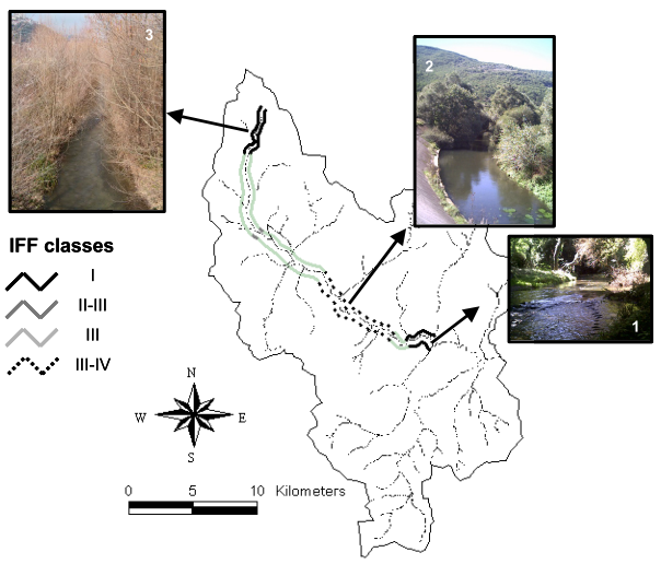 Localization of Buffer Strips by using IFF field data and Landsat-TM satellite data