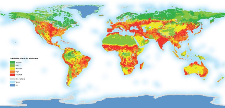 """Special Issue """"Global Gridded Soil Information Based on Machine Learning"""""""